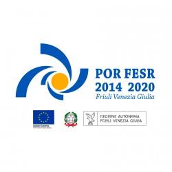 POR FESR 2014 2020_FVG_Estrima_2